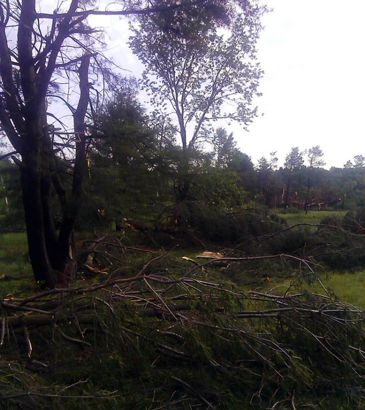 Strong Storms Down Trees, Power Lines Throughout Region; Thousands Lose Power
