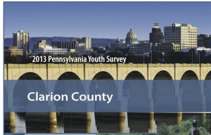 Clarion County Profile Report 2013