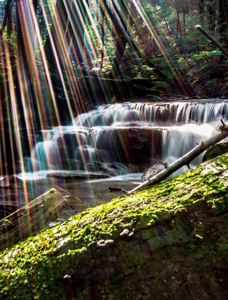 """Phenomenon at Rapp Run Falls.""  Submitted by Mountain Man Photography‎."