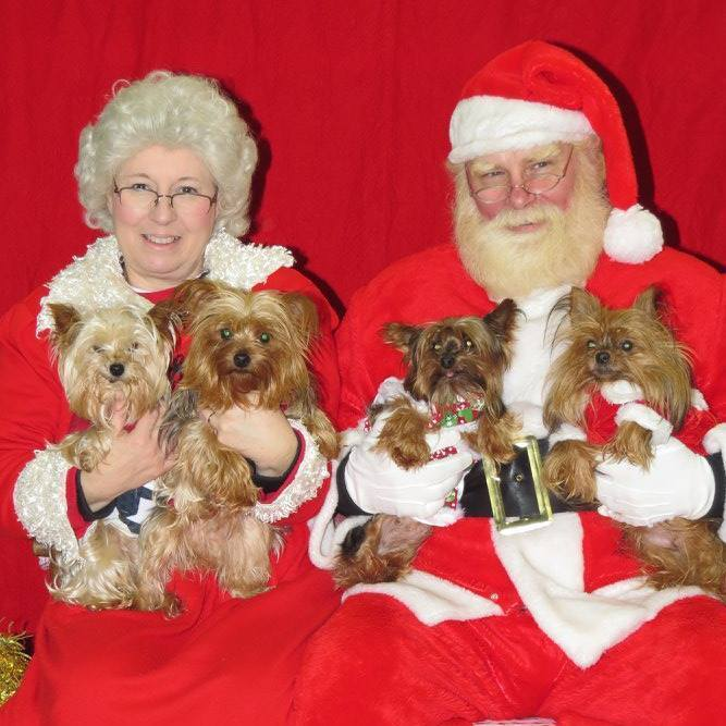 Yorkies meet Santa and Mrs. Claus at Tractor Supply. Submitted by Mary McGuire.