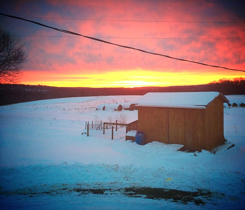 Knox, Pa.  Submitted by Kandi Beichner.