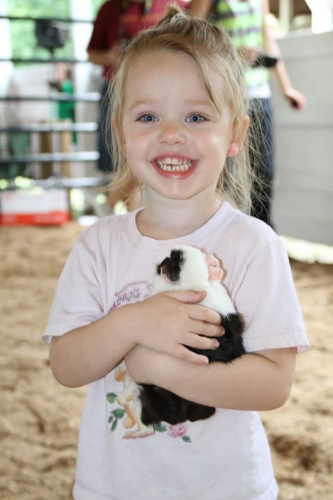Stephenie Draa at Clarion County Fair Pet Show with her guinea pig. Submitted by Stephenie's mom, Kristie.
